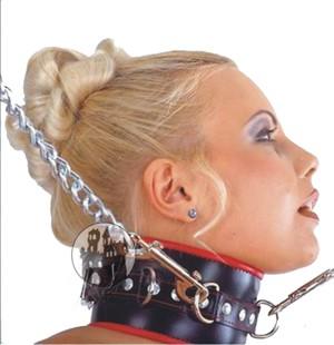 Leder-Halsband mit vielen D-Ringen