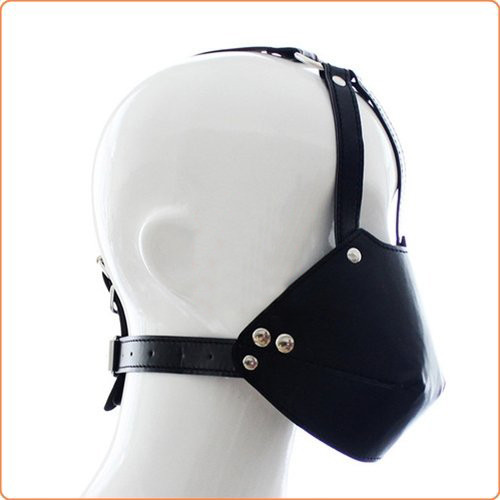 Kopfharness mit Maulkorb und Ballknebel