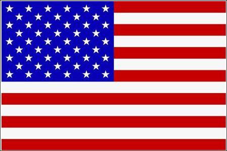 Schwenkfahne mit Holzstab 'U.S.A'