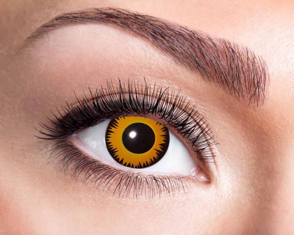 Kontaktlinsen 'Explosion'