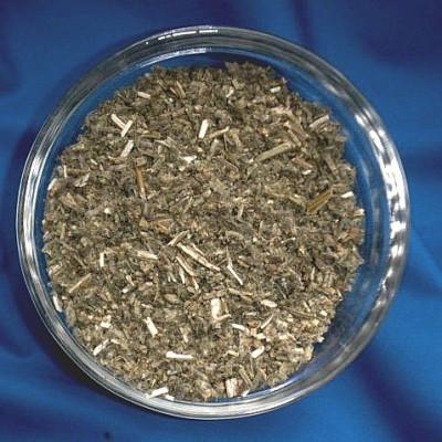 Andornkraut (Marrubium vulgare)
