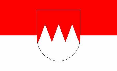 Fähnchen mit Holzstab 'Franken mit Wappen'