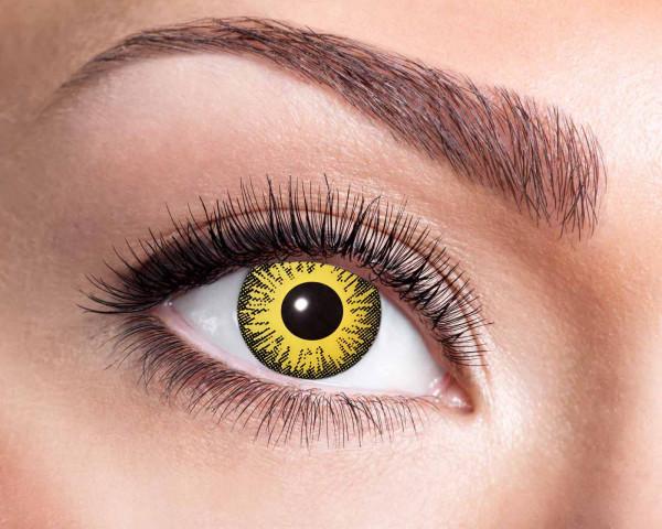 Kontaktlinsen 'Sun Flower'