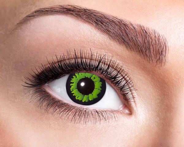 Kontaktlinsen 'Jungle'