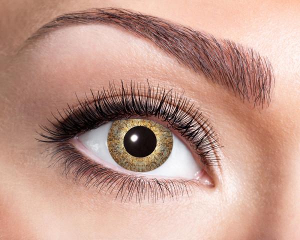 Kontaktlinsen Gold - Sparkle