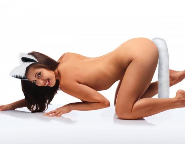 Foxtail Analplug Set modelle-sex
